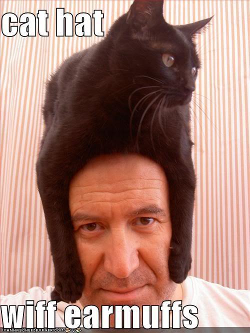 zzzzzzzs-cat-hat-head